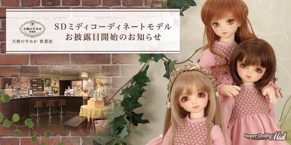天使のすみか 秋葉原「SDミディコーディネートモデル」お披露目開始のお知らせ