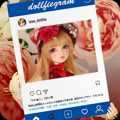 SDワンオフモデルをご紹介中! スーパードルフィー公式 Instagram