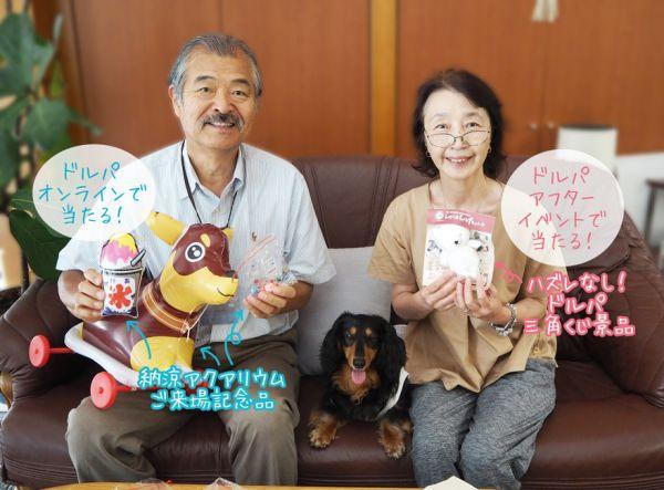 「HTドルパ京都17」開催の中止及び「HTドルパ京都17オンライン」開催のお知らせ