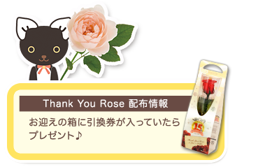 Thank You Rose 配布情報:お迎えの箱に引換券が入っていたらプレゼント♪