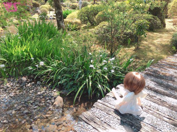 天使の里 庭園より